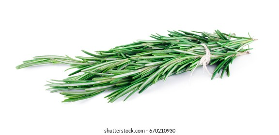 Rosemary bunch isolated on white background