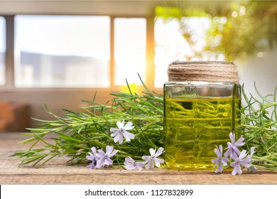 Rosemary essential oil on table