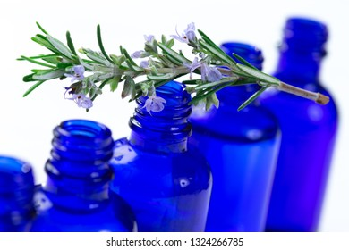 Rosemary in flower with an aromatherapy essential oil blue glass bottle , over white background