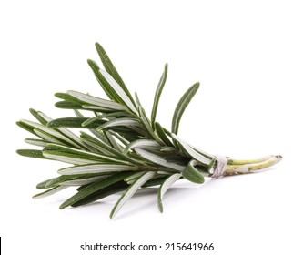 rosemary herb spice leaves isolated on white background cutout
