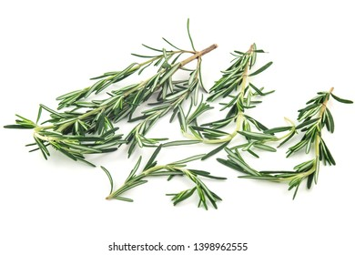 rosemary herb spicy food isolated on white background