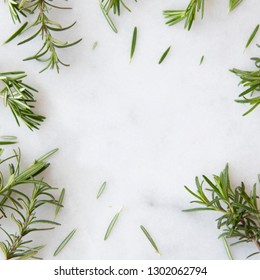 Rosemary sprigs on marble surface with copy space
