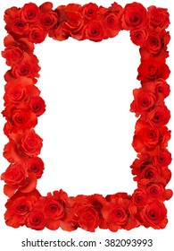 Rose.Rose frame.Pink roses in a bunch on a white background.Background abstract made of roses.