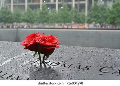 Roses at the 9/11 Memorial