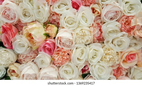 Roses for background or texture.