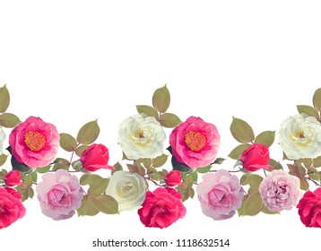 Roses border watercolor painting ,isolated on white background,