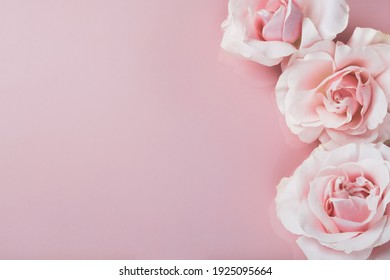 Roses flowers on pastel pink background. Mothers day, womens day, spring composition. Top view, flat lay, copy space