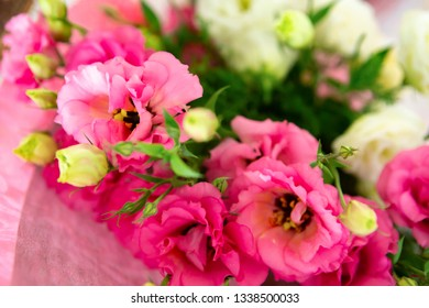 Roses flowers and petals background. a bouquet of beautiful flowers for a gift. greeting card.