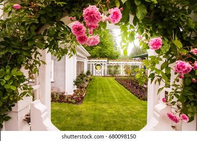 Roses Garden with the lovely garden