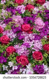 Roses and hydrangea
