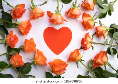 roses laid out in the shape of a heart on a white background, inside a heart made of matter, top view