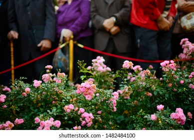 Roses on funeral with blurry people standing in the background