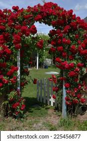 roses on a garden door