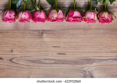 Roses on a wooden background. Spring backgroun