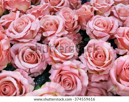Roses pale pink flowers beautifully put stock photo edit now roses pale pink flowers are beautifully put together and used as a welcome gift for mightylinksfo