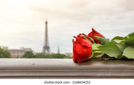 Roses in Paris, the city of love