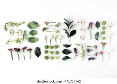 roses, pink flower buds, branches and leaves isolated on white background. flat lay, top view