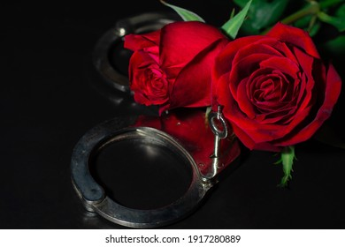 roses red and shackle on the dark background