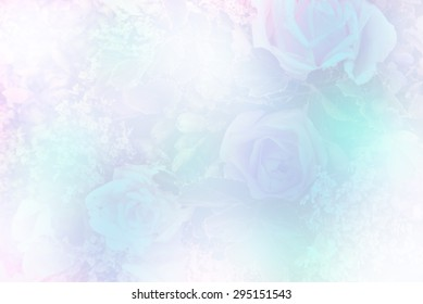 Roses in soft color and blur style for background