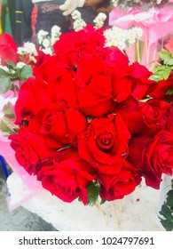Roses Valentines Day