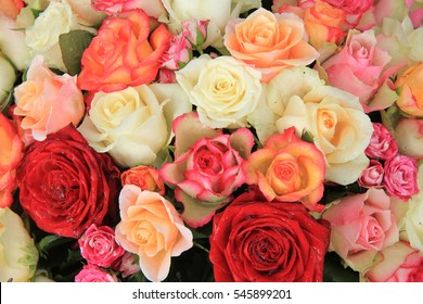 Roses in various shades of red, orange and pink in a bridal bouquet