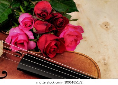 Roses and Violin on woode background