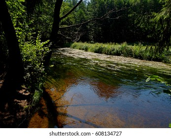 Rospuda River Current. District Augustow, Poland - August 08, 2012 Natural forest surrounding the river Rozpuda in the forest near Augustow.