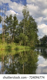 Rospuda river near Augustow. Poland