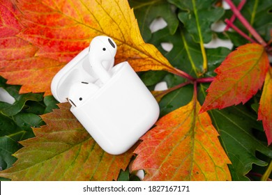 ROSTOV, RUSSIA - August 26, 2020: Apple AirPods wireless Bluetooth headphones and charging case for Apple iPhone lie on colorful foliage. Autumn presentation Apple