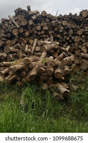 Rot rubber timber stack