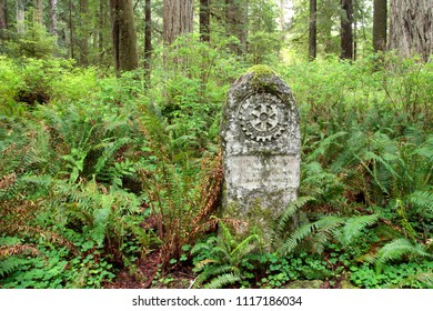 Rotary Memorial Grove Marker, Foothill Trail, Prairie Creek Redwoods State Park, California, USA