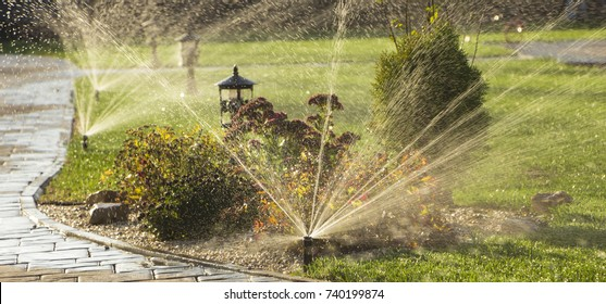 A rotating sprinkler spraying a water into the backyard.