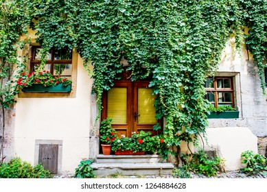 Rothenburg ob der Tauber, Bavaria, Germany - August 17 2018: Wooden curved door and windows surrounded by vines on the cobblestoned streets of Rothenburg ob der Tauber, Germany