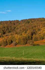 ROTHES,MORAY, SCOTLAND - 14 OCTOBER 2018: This is a very colourful autumn view within the Rothes Glen, Moray, Scotland on a sunny 14 October 2018.