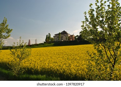 Rotonda Villa in Vicenza Italy and rapeseed field in spring