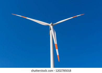 Rotor blades of a wind turbine