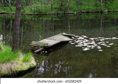 rotten gangplank, pond