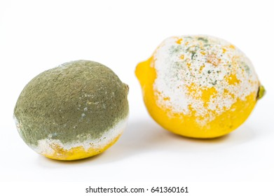 rotten lemons