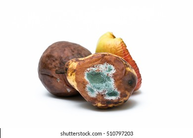 Rotten, moldy, wrinkled and decomposing fruits, pear, apple isolated on white background. Recycled as organic waste.