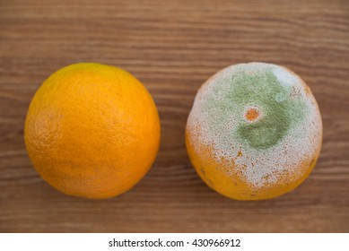rotten orange and a good one