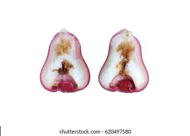 Rotten rose apple from the inside due to oriental fruit fly (Bactrocera dorsalis Hendel)