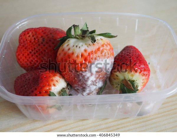 rotten strawberries