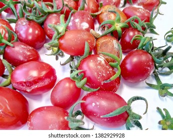 Rotten tomatoes have fungi. Damaged by storage, or mildew causing rotten tomatoes The damaged tomato skin is contaminated.