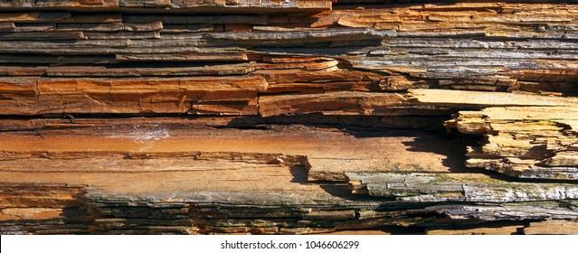 Rotten, weather damaged wood surface.