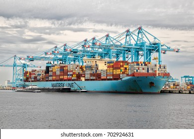 ROTTERDAM - AUG 23, 2017: Maersk container ship moored in the Maasvlakte 2 in the Port of Rotterdam.