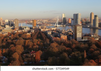 Rotterdam city view with skyscrapers and bridge from the top point, the Netherlands