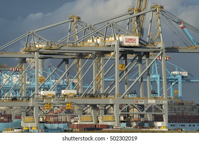 ROTTERDAM, THE NETHERLANDS - AUGUST 28, 2016: Shore cranes of the Rotterdam World Gateway (RWG) terminal for the international transshipment of containers.