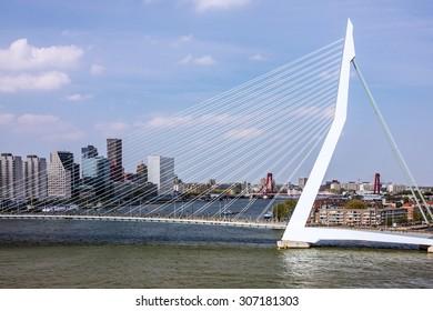 Rotterdam, Netherlands. Erasmus bridge and  harbor