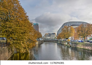 Rotterdam, The Netherlands, October 26, 2017: Chestnut trees in autumn colors on the quays of Steigergracht canal, with Markthal and the library in the background
