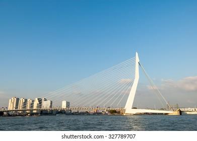 ROTTERDAM, NETHERLANDS - SEP 20, 2005: Erasmus Bridge 'The Swan' over New Meuse River in Rotterdam, the Netherlands